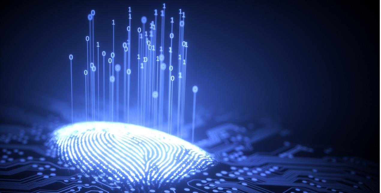Políticas de Cibersegurança